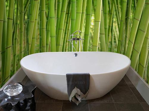 rénovation salle de bains moderne panneau de douche décoratif personnalisé motif bambou couleur verte vitalité,revêtement PVC étanche photo imprimée cabine de douche forêt de bambou,mur de baignoire imperméable fresque murale bambou en printemps couleur vert pomme un coup de coeur pour décorer votre salle de bains