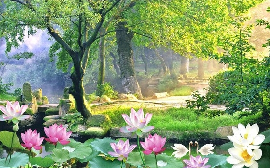 décor zen,lotus,foret naturelle,papier peint paysage zen,tapisserie paysage zen,poster paysage zen,papier peint lotus,tapisserie lotus,poster lotus,papier peint foret,tapisserie foret,poster foret,tete de lit zen,tete de lit lotus,tete de lit paysage zen