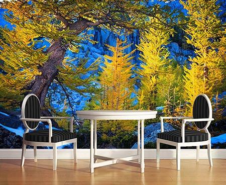 Tapisserie Paysage Nature Papier Peint Photo Panoramique Foret De