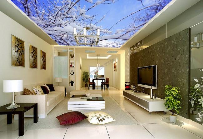 Plafond tendu imprim sur mesure paysage d 39 hiver la neige for Fond plafond moderne