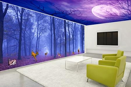 paysage fantaisie,fantaisie,plafond tendu,décor plafond,plafond tendu imprimé,plafond tendu cile nuit,plafond tendu lune,décor plafond forêt,papier peint intissé plafond,faux plafond,plafond,poster forêt,papier peint fantaisie